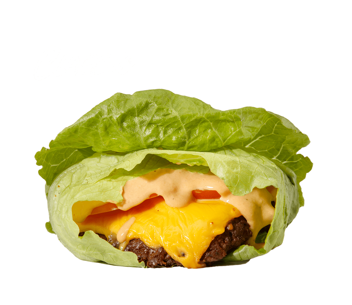 Protein Classic